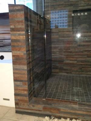 Gap Too Much Showcase Shower Door